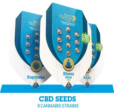 RQS Medical (CBD)