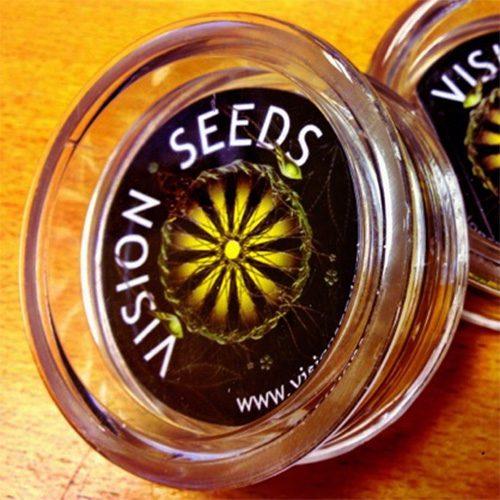 Vision Seeds Plastic Grinder