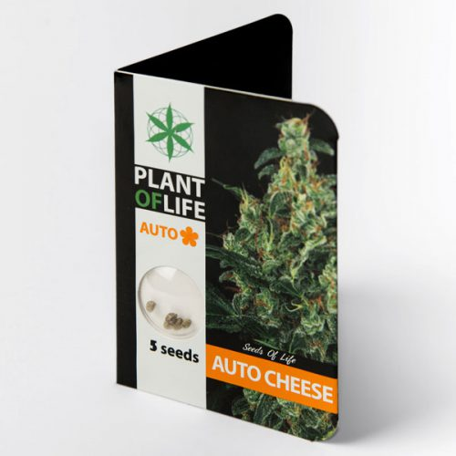 AUTO CHEESE (Plant of Life)