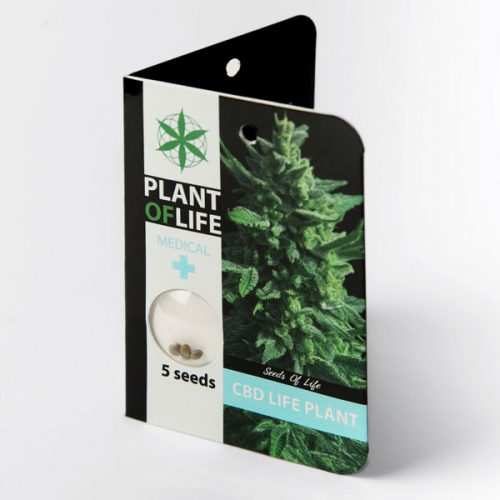 CBD LIFE PLANT (Plant of Life)