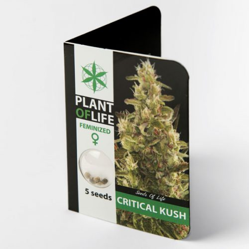 CRITICAL KUSH (Plant of Life)