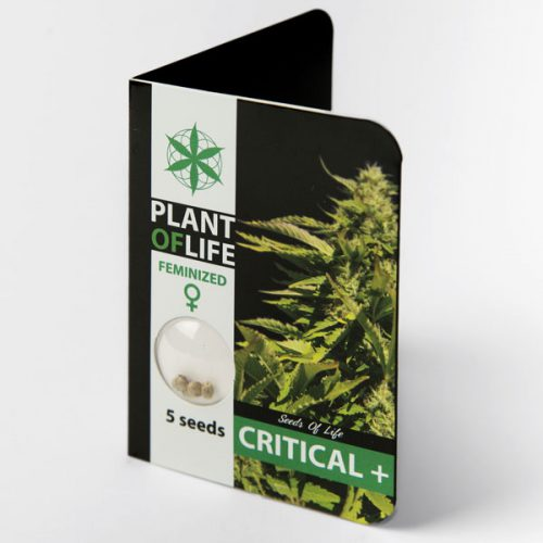 CRITICAL + (Plant of Life)