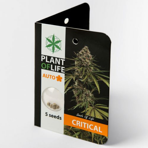 CRITICAL AUTO (Plant of Life)