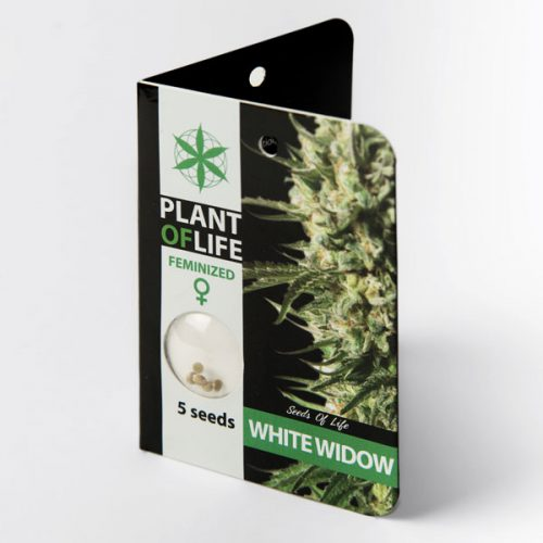 WHITE WIDOW (Plant of Life)