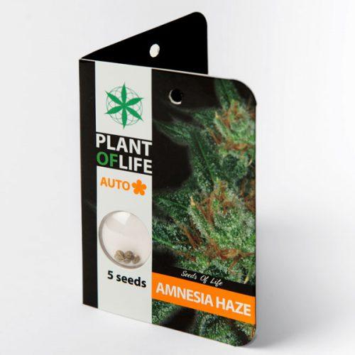 AMNESIA HAZE AUTO (Plant of Life)